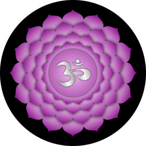 Il settimo chakra, sahasrara